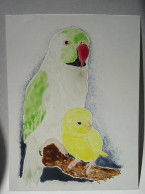"Custom Made ""The Ringneck & The Budgerigar"" Watercolor Painting"