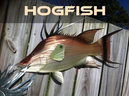 Custom Made Hogfish