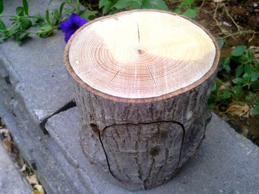 Custom Made All-Natural Bandsaw Log Box