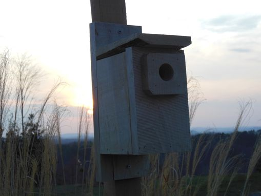 Custom Made Blue Bird Birdhouse