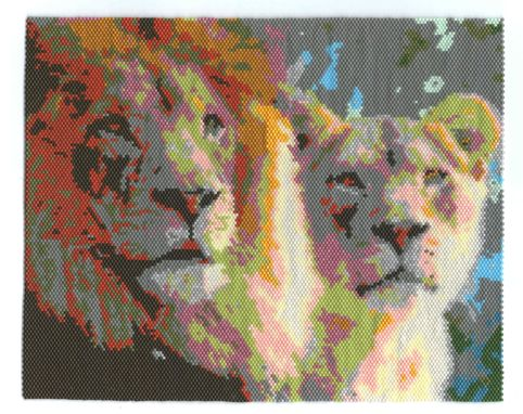 Custom Made Lion And Lioness Animal Portrait