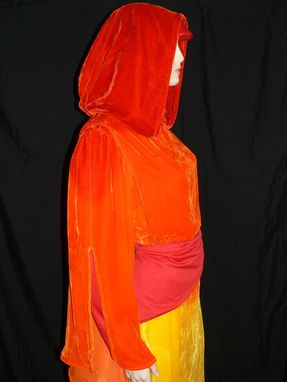 Custom Made Star Wars Padme Flame Gown