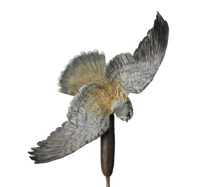 Custom Made Falcon Kestral Bird Bronze Sculpture