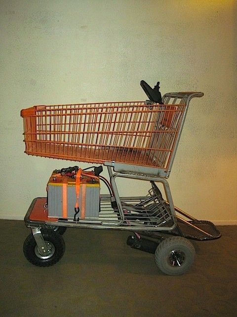Custom Made Freak Utility Carts Fun Motorized Shopping
