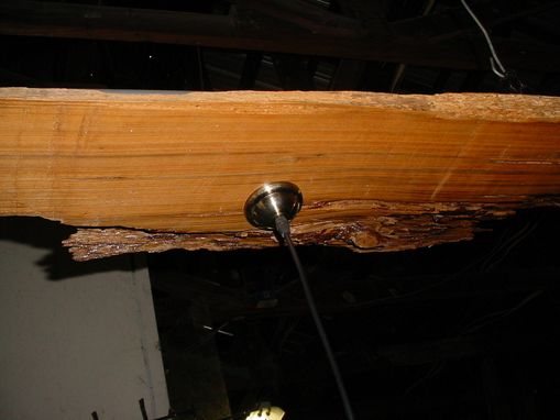Custom Made Louisiana Sinker Cypress Specimen Slab 3 Drop Light Fixture 7 Foot Long