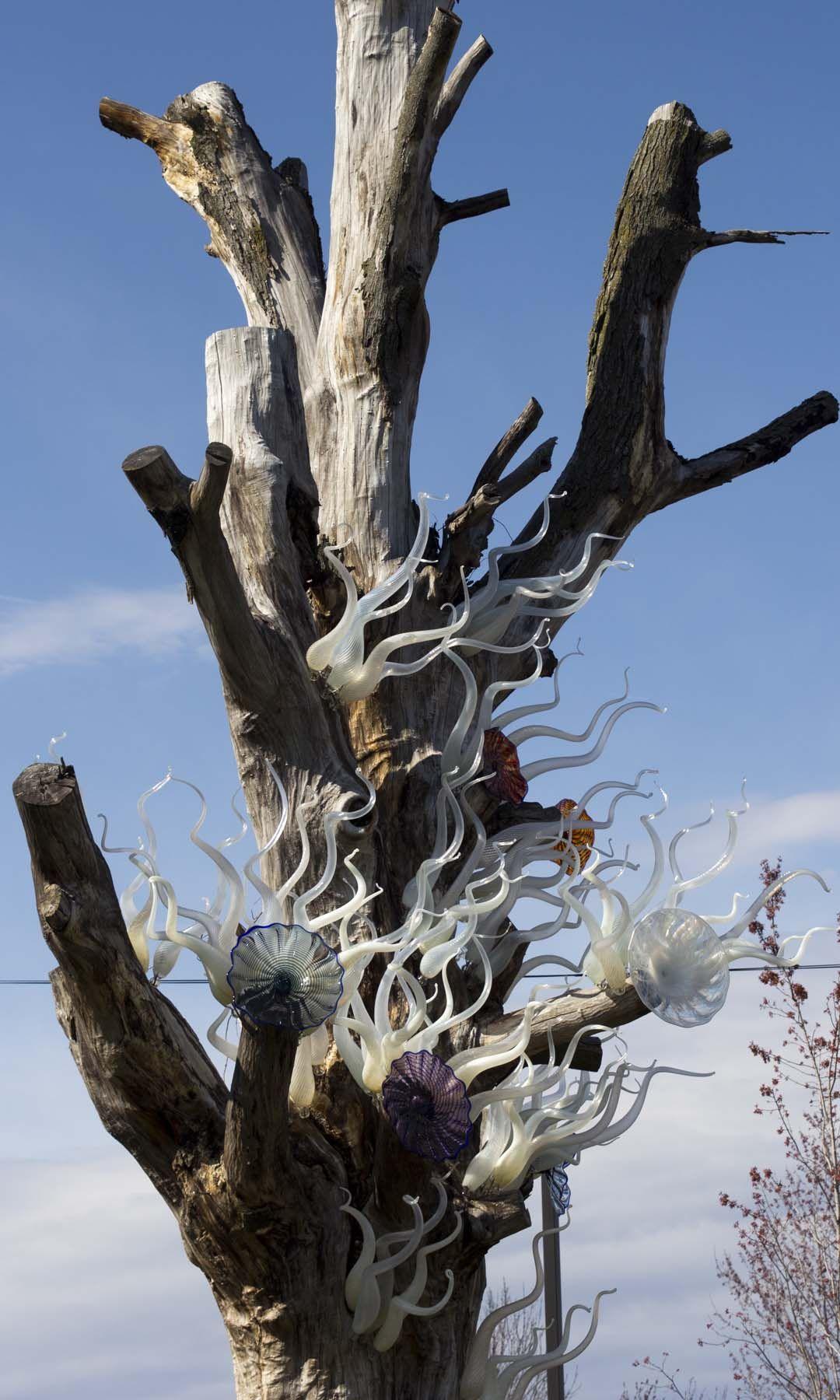 Handmade Lost Trees Reborn