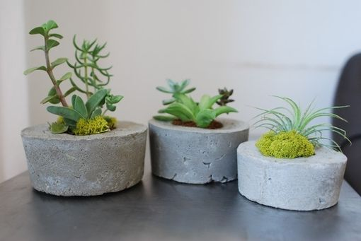 Custom Made Concrete Air Plant And Succulent Containers - Set Of 3-Air Plant And Succulent Holder-Concrete Pot
