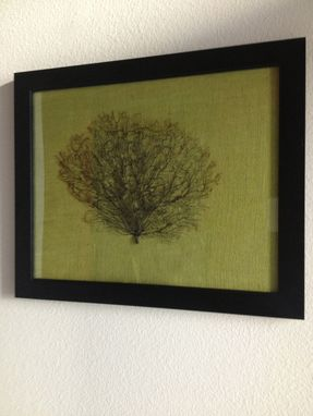 Custom Made Framed Sea Fan - Natural Black Sea Fan In A Black Frame