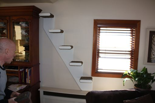 Custom Made Cat Stairs