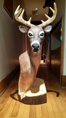 Custom Made Lifesize Buck Bust 8 Pointer