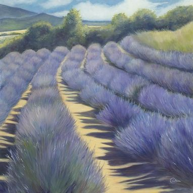 Custom Made Provence Lavender (Southern France) - Fine Art Print On Canvas, Stretched (30 X 30 X 1)