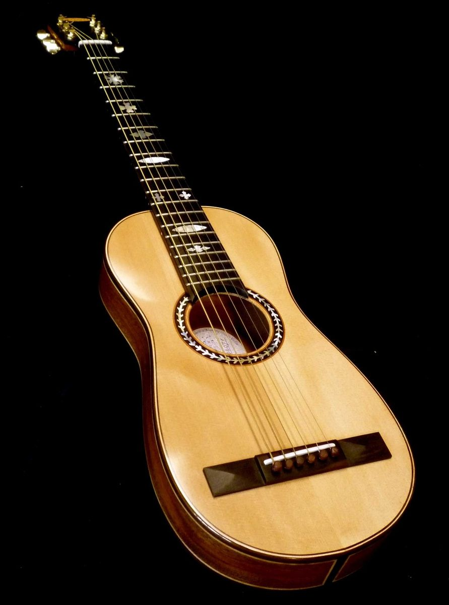 Custom Made Blueberry Travel Size Acoustic Guitar by Blueberry ...