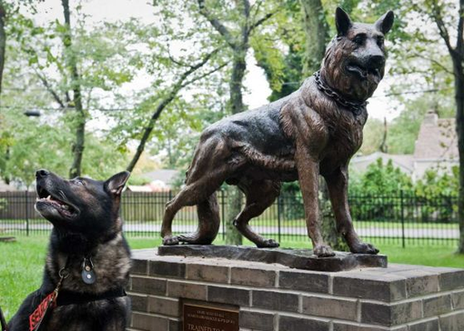 Custom Made Bronze German Shepherd Memorial | Life Size Bronzes - Custom Bronze Statues - Lost Wax Casting