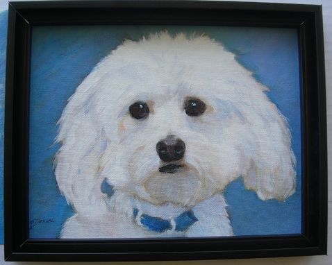 Custom Made Custom Dog Pet Portrait Of Clancy, A Havanese