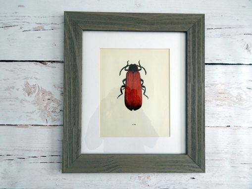 Custom Made Antique Red Beetle Lithograph Print Framed In Barn Board