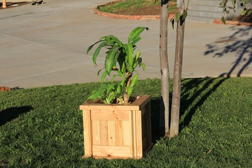 Custom Made Planter Box