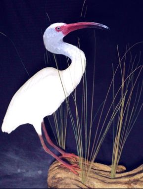 Custom Made Herons Egrets Custom Waterbirds