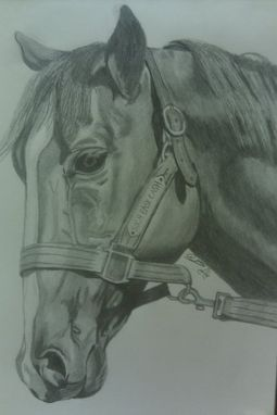Custom Made Original Graphite Drawing