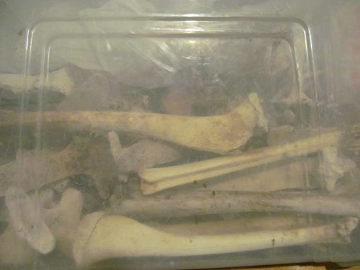 Custom Made Big Bad Wax Encaustic Sculpture Project To Include Bones And Found Items