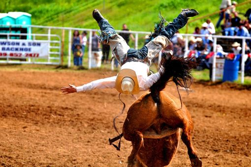 Custom Made Fine Art Photograph Of Back Flipping Bronc Rider