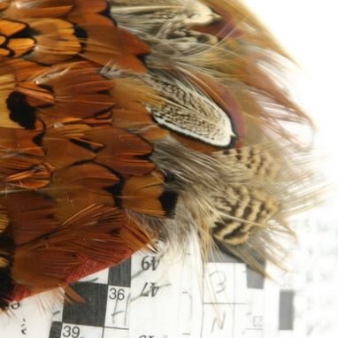 Custom Made Pheasant Feather Cocktail Fascinator - Fire