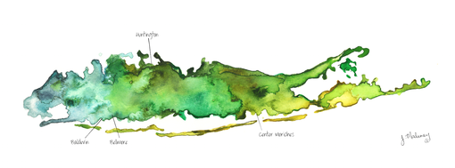 Custom Made Custom Watercolor Map With Significant Locations