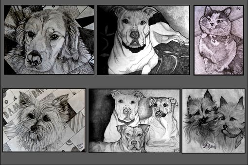 Custom Made Dog Memorial,Dog Portraits, Pet Portraits, Pet Drawings,Original Portraits, Pet Lovers Gift Ideas
