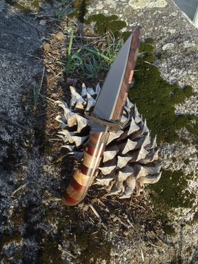Custom Made Walnut And Manzanita Knife With Cherry Accents