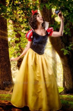 Custom Made Custom Snow White D Adult Costume