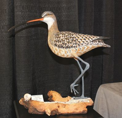 Custom Made Long Billed Curlew Decorative Carving