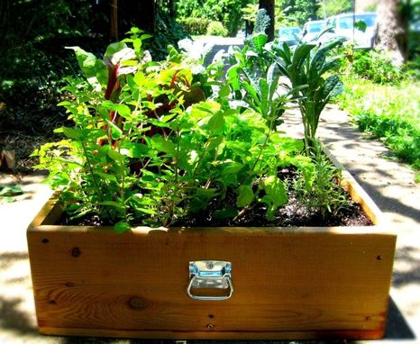 Custom Made Suitcase Garden
