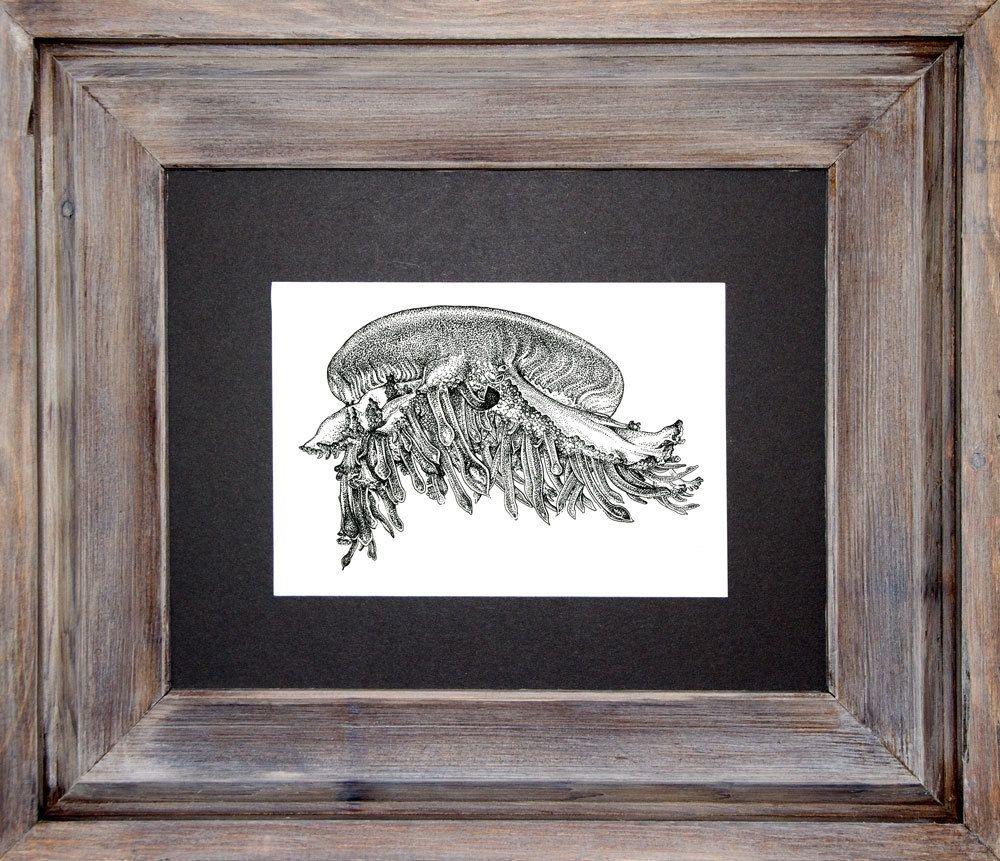 Custom Made Jellyfish Art - 8x10 Stippled Scientific