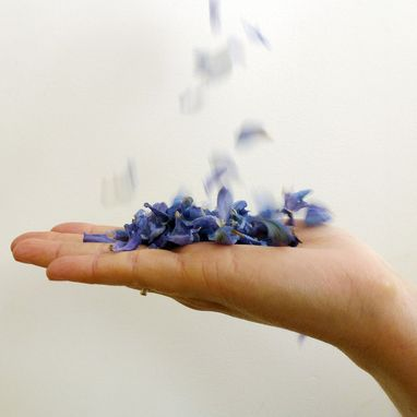 Custom Made Blue Petal Confetti