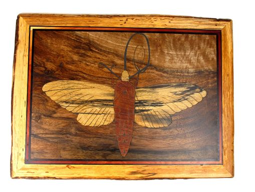 Custom Made Insect Wall Art In Reclaimed Wood