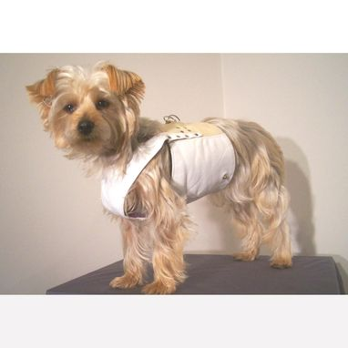 Custom Made Leather Dog Coat And Harness