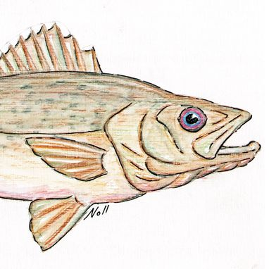 Custom Made Aceo With Walleye Pike Fish Drawing