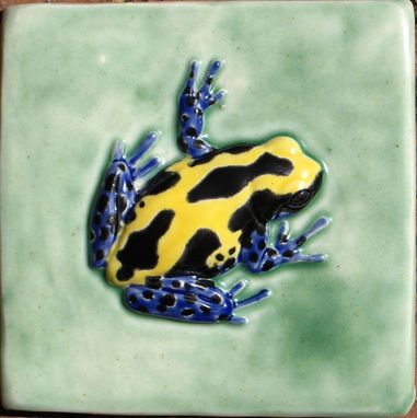 Custom Made 4x4 Poison Dart Frog Tiles