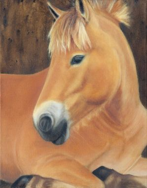 Custom Made Horse Painting - Oil On Canvas In Black And Gold Wood Frame - Horse Art