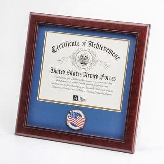 Custom Made 8 By 10 American Flag Medallion Certificate Frame