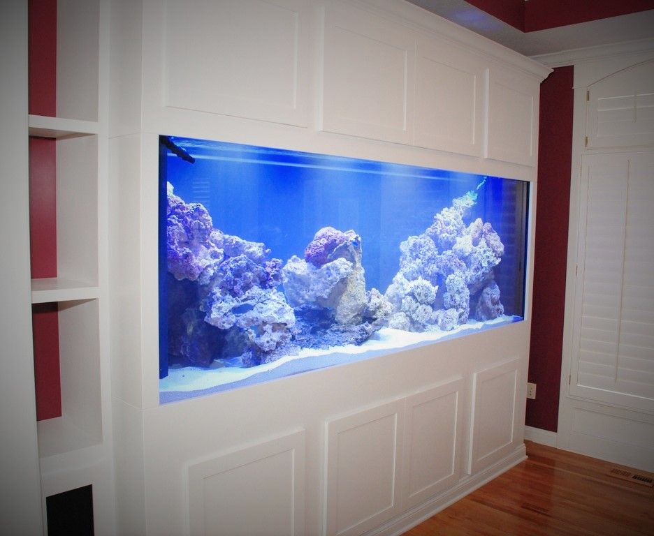 white aquarium stand 1000 aquarium ideas. Black Bedroom Furniture Sets. Home Design Ideas