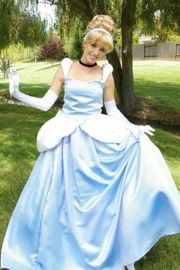 Custom Made Cinderella Gown Adult Costume Version J