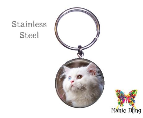 Custom Made Pet Memorial Keyring - Glass And Stainless Steel
