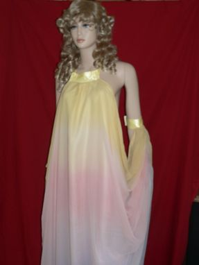 Custom Made Star Wars Padme Lake Gown