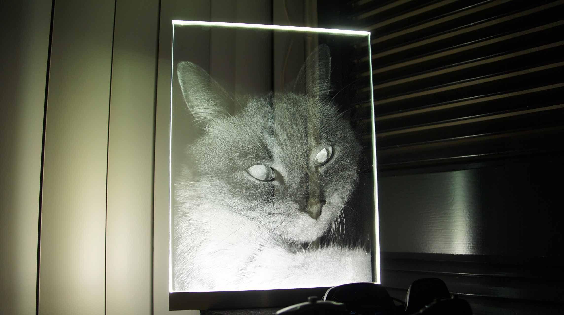 Custom Made Pet Portrait Led Illuminated Glass Etching
