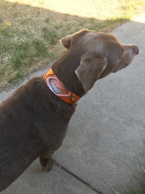 Custom Made Agate Effect Leather Dog Collars