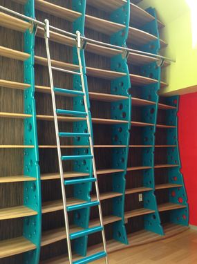 Custom Made Home Library With Library Ladder, Built In Bookcase, Bookshelf
