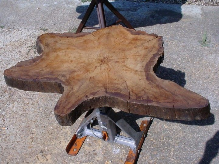 Hand Crafted Sold Cypress Slab Top Indusrtial Style Metal Pedestal - Cypress stump coffee table