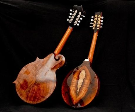 Custom Made Custom Handmade Mandolin Family Musical Instrument