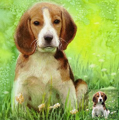 Custom Made Made To Order Pet Painting! Your Photos Can Become Oil Or Watercolor Portraits
