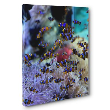 Custom Made Clown Fish And Corals Photography Canvas Wall Art